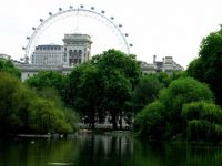 Park near Buckingham Palace and London Eye
